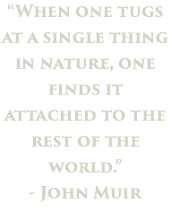 """When one tugs at a single thing in nature, one finds it attached to the rest of the world."" - John Muir"